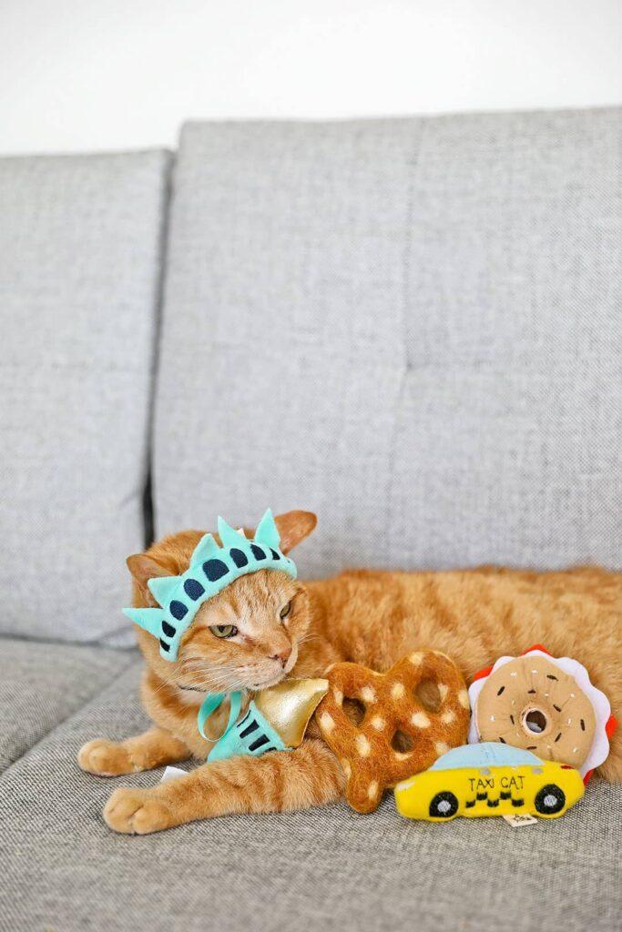 Meowbox Review