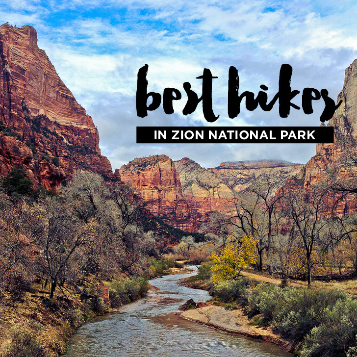 15 Best Hikes in Zion National Park.