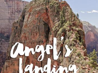 Hiking Angels Landing Zion National Park.