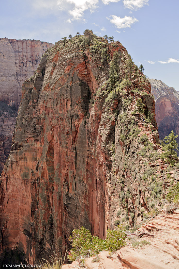 Angels Landing Zion National Park (15 Amazing Day Hikes in the US to Add to Your Bucket List Now) // localadventurer.com