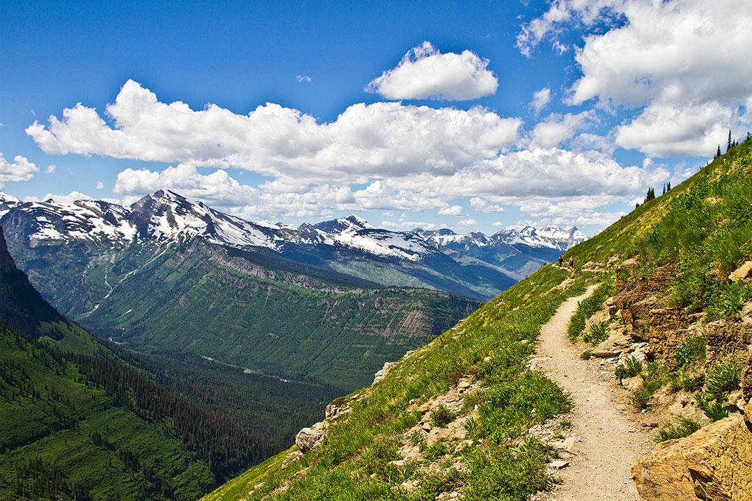 Highline Trail Glacier National Park + 15 Best Day Hikes in the US