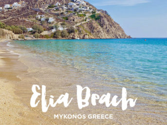 ελιά Elia Beach Mykonos Greece - Best of Mykonos Beaches.