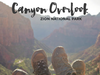 Canyon Overlook Trail Zion National Park Hikes.