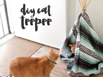 DIY Cat Teepee.