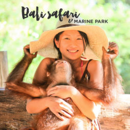 Riding Elephants at the Bali Safari and Marine Park