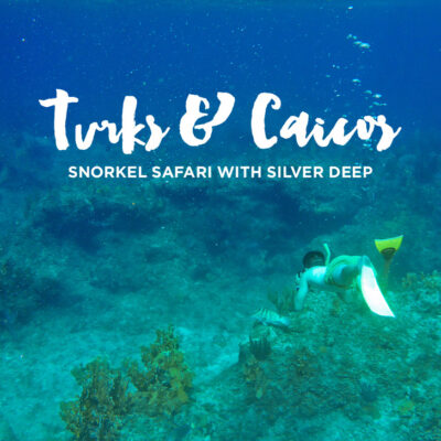 Turks and Caicos Snorkeling with Silver Deep.