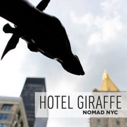 Where to Stay in NoMad – Hotel Giraffe NYC