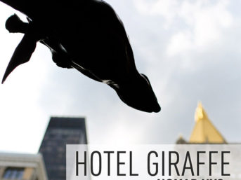 Hotel Giraffe NYC - NoMad Neighborhood.