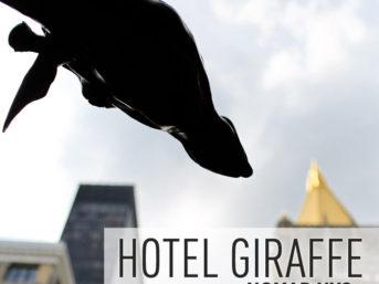 Hotel Giraffe NYC - NoMad Neighborhood.