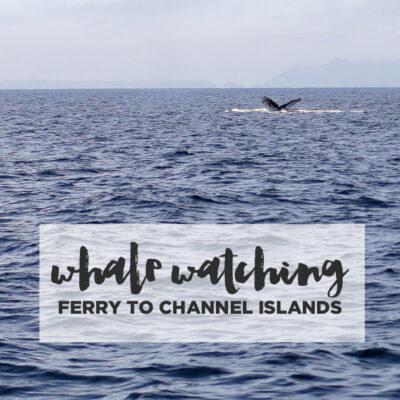 Channel Islands Ferry.
