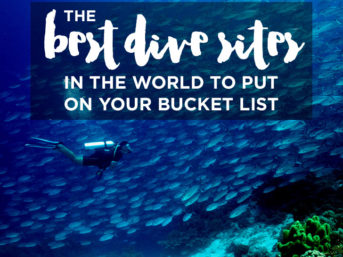25 Best Dive Sites in the World to Put On Your Bucket List.