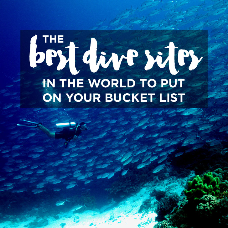 25 Best Dive Sites in the World to Put on Your Bucket List