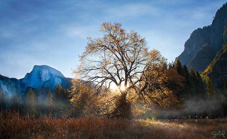Cooks Meadow (17 Top Things to Do in Yosemite National Park) - Things to Do in Yosemite with Kids + Easy Things to DO in Yosemite // localadventurer.com