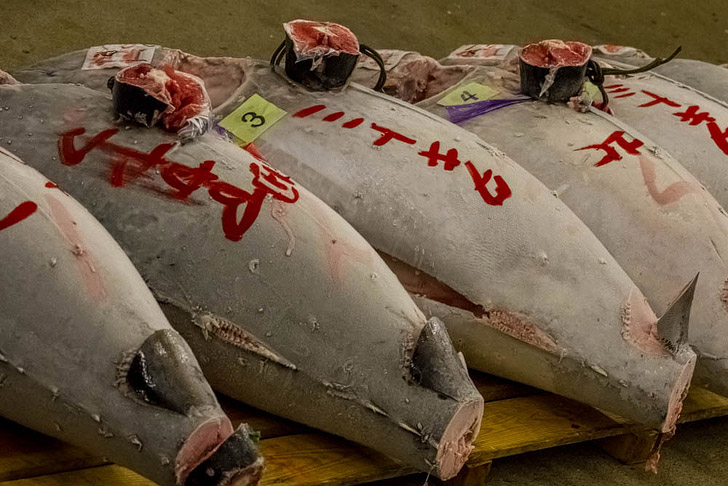 Tsukiji Fish Market (25 Best Markets in the World to Put on Your Bucket List).