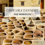 Colorful Sights & Smells of the Chouara Tannery