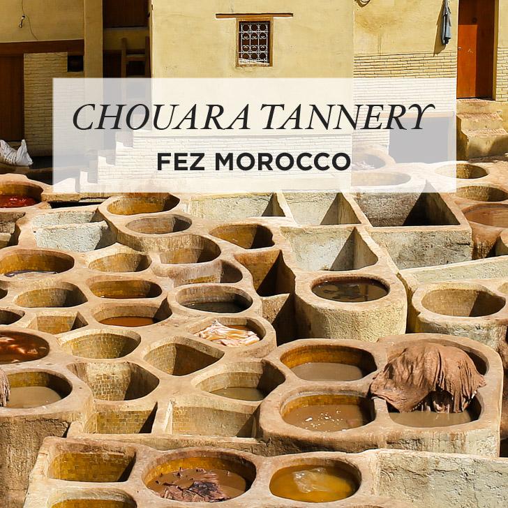 Chouara Fes Tannery Photo Guide