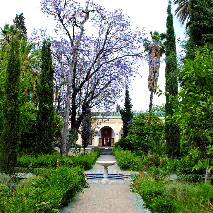 Dar Batha Museum (21 Amazing Things to Do in Fes Morocco).