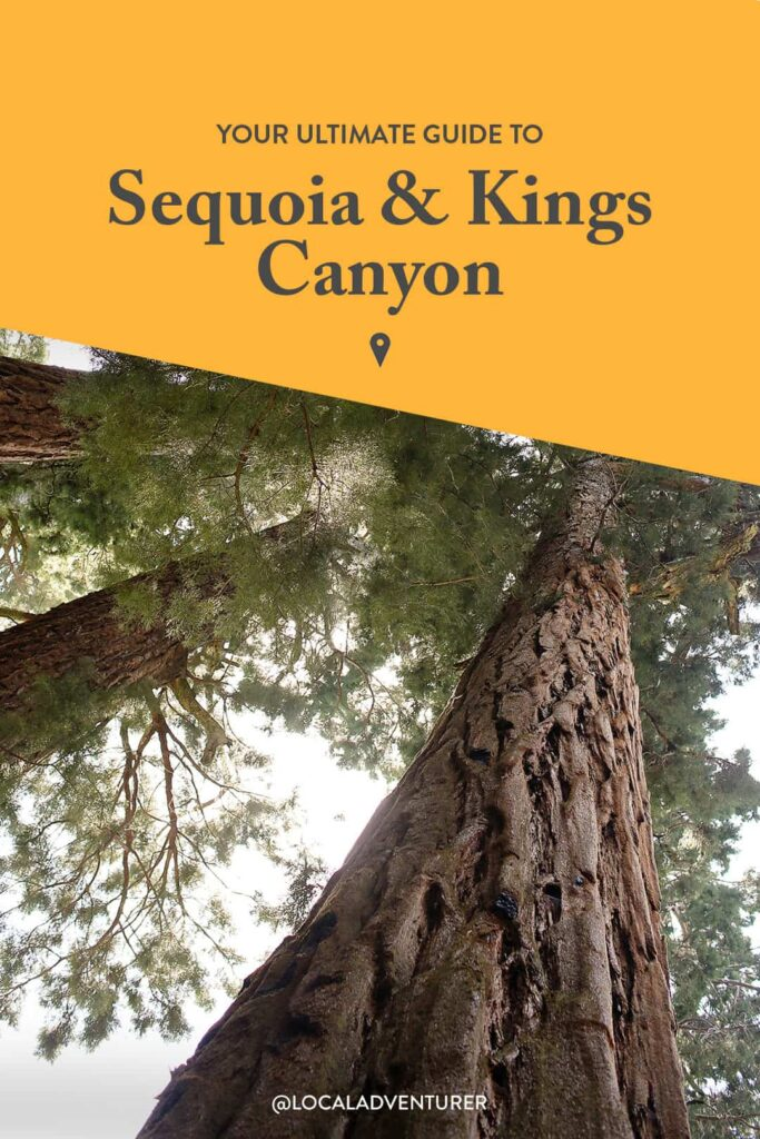Sequoia National Park Things to Do