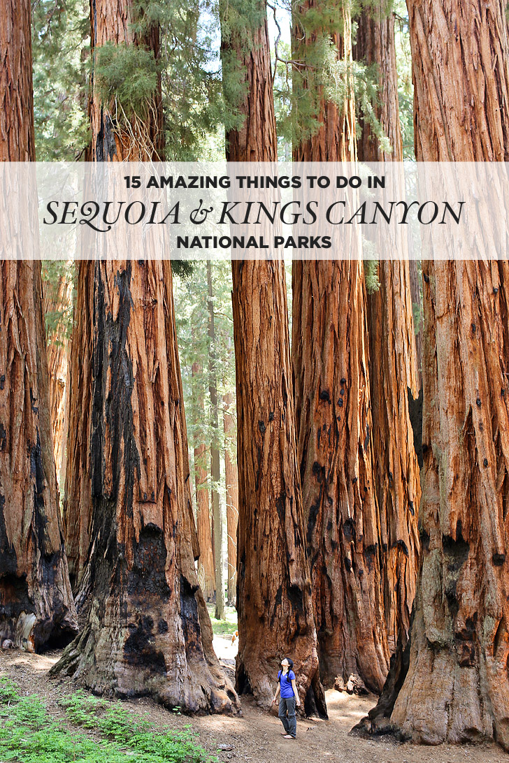 15 Amazing Things to Do in Sequoia National Park + Kings Canyon National Park.