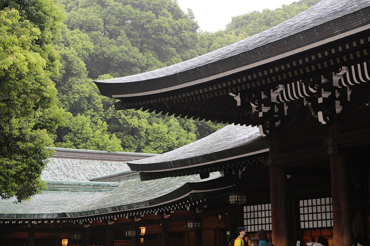 Write a Prayer at the Meiji Shrine in Harajuku (13 Top Things to Do in Tokyo Japan).