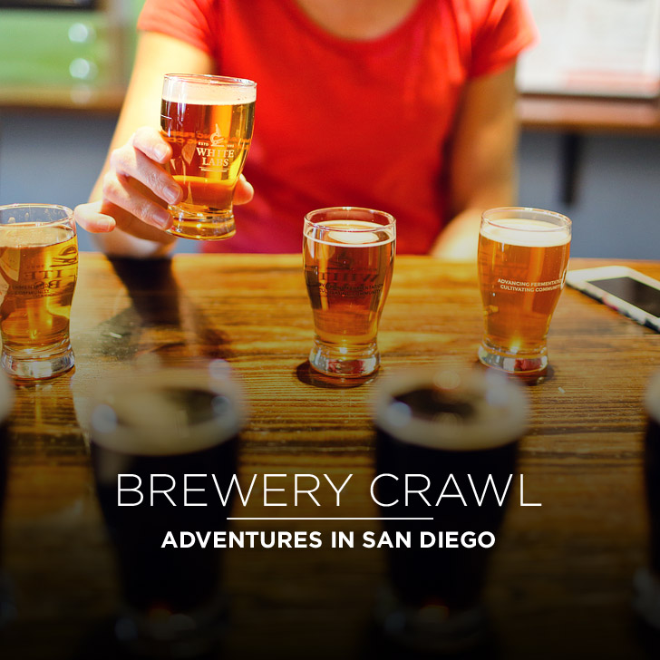 Brewery Tours with Adventures in San Diego.