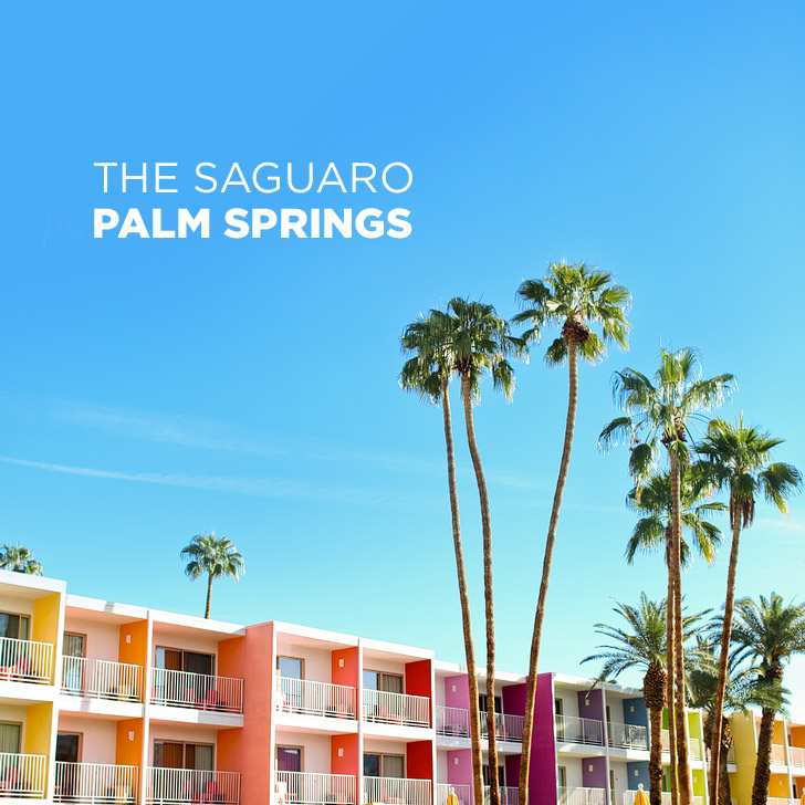 Colorful Photoshoot at the Saguaro Hotel Palm Springs CA