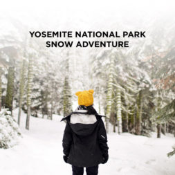 A Winter Wonderland – Yosemite Winter Snow Day Adventure