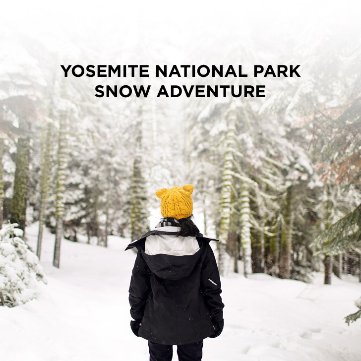 Yosemite Winter Snow Day Adventure with Local Adventurer