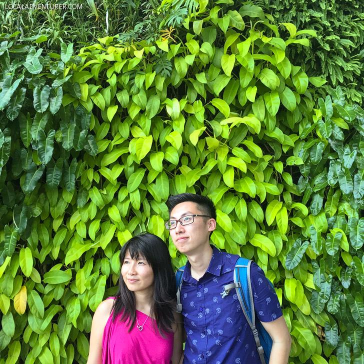 Botanical Garden Singapore.