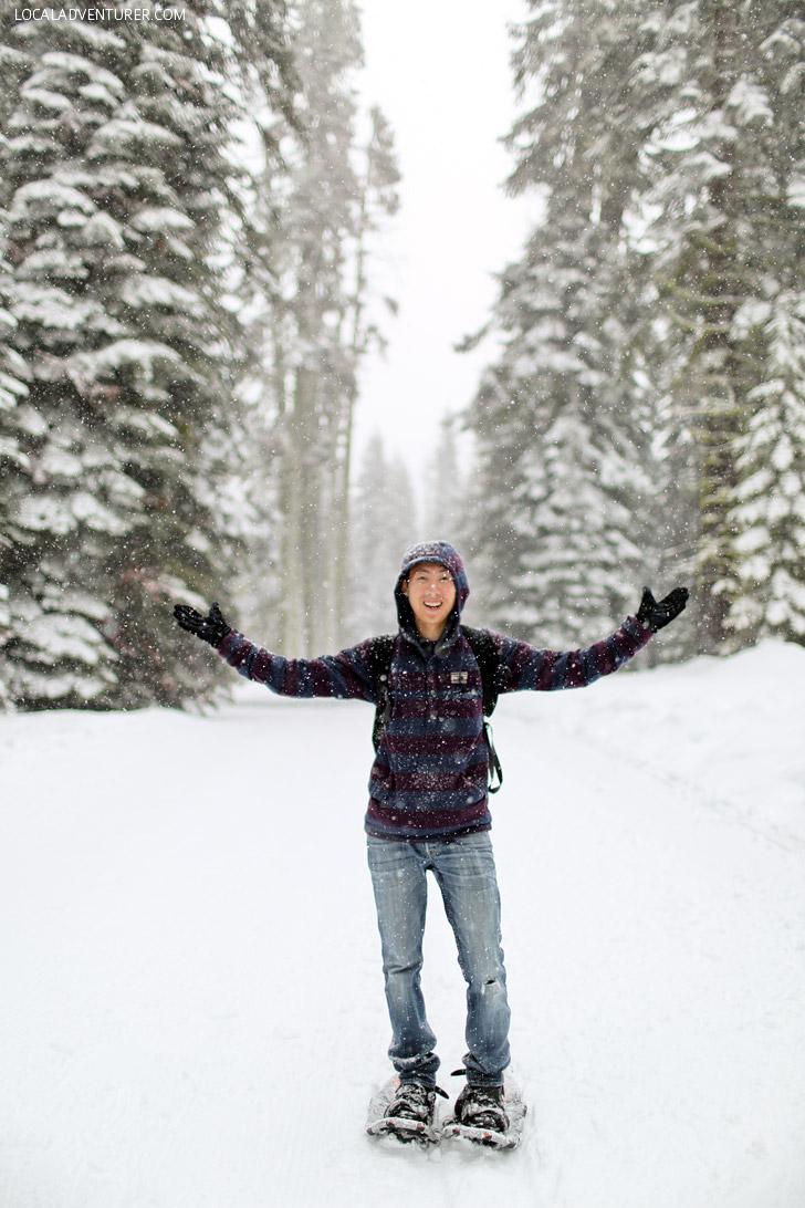 Yosemite Snow!