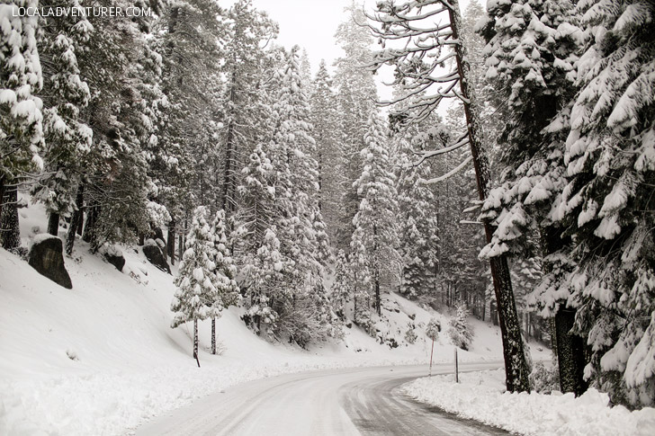Yosemite National Park Winter Roads.