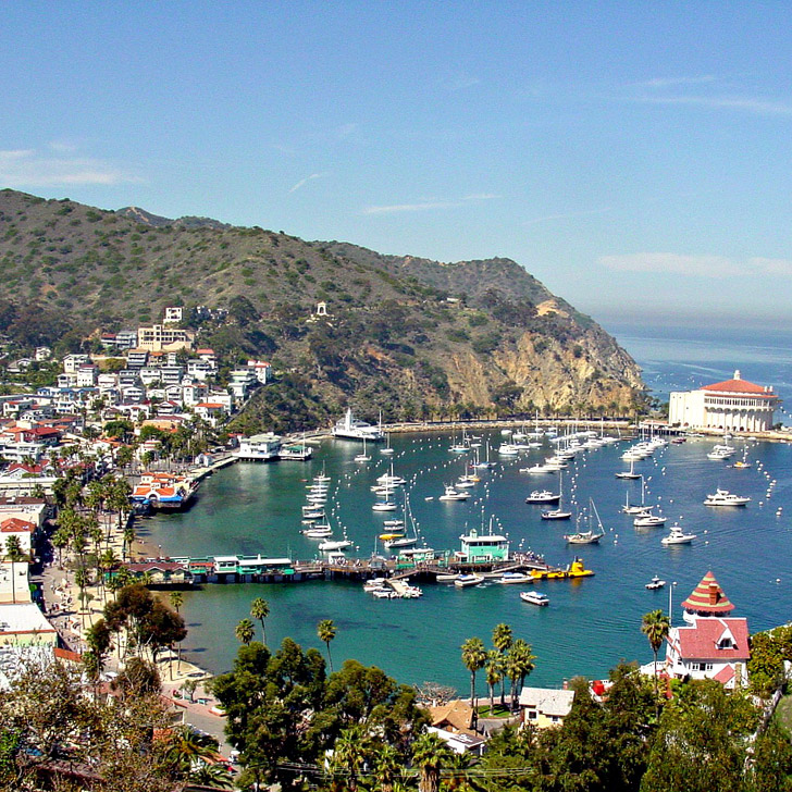 The Catalina Island Ferry is Free on Your Birthday! + 25 Free Things to Do in LA // localadventurer.com