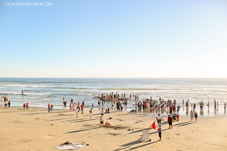 Where To Find The Sunken Ship On Coronado Beach Recent Storms Have Uncovered A