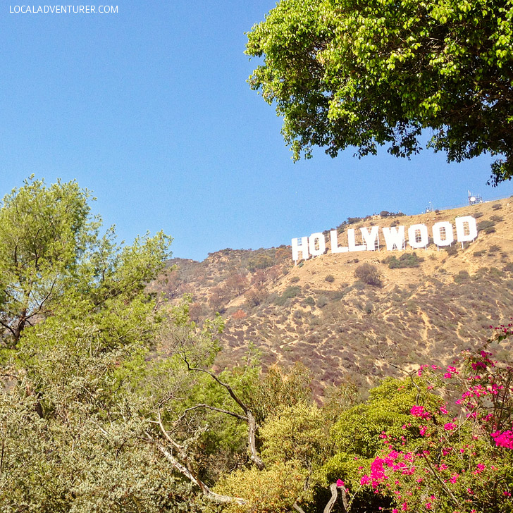 Hike to the Hollywood Sign + More Fun Free Things to Do in LA // localadventurer.com