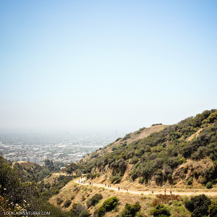 Hike Runyon Canyon - the most popular and most touristy hike in LA + 25 Free Things to do in LA // localadventurer.com