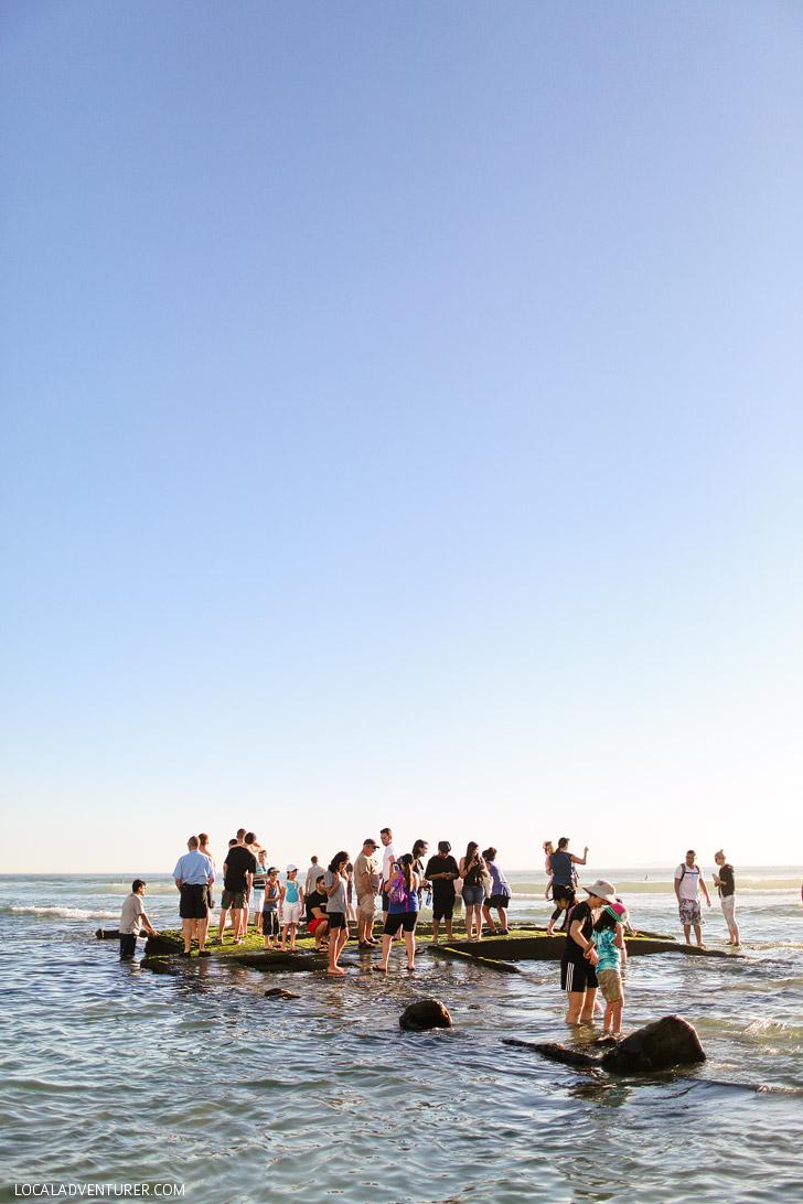 South beach game show with kinky amateurs - 4 1