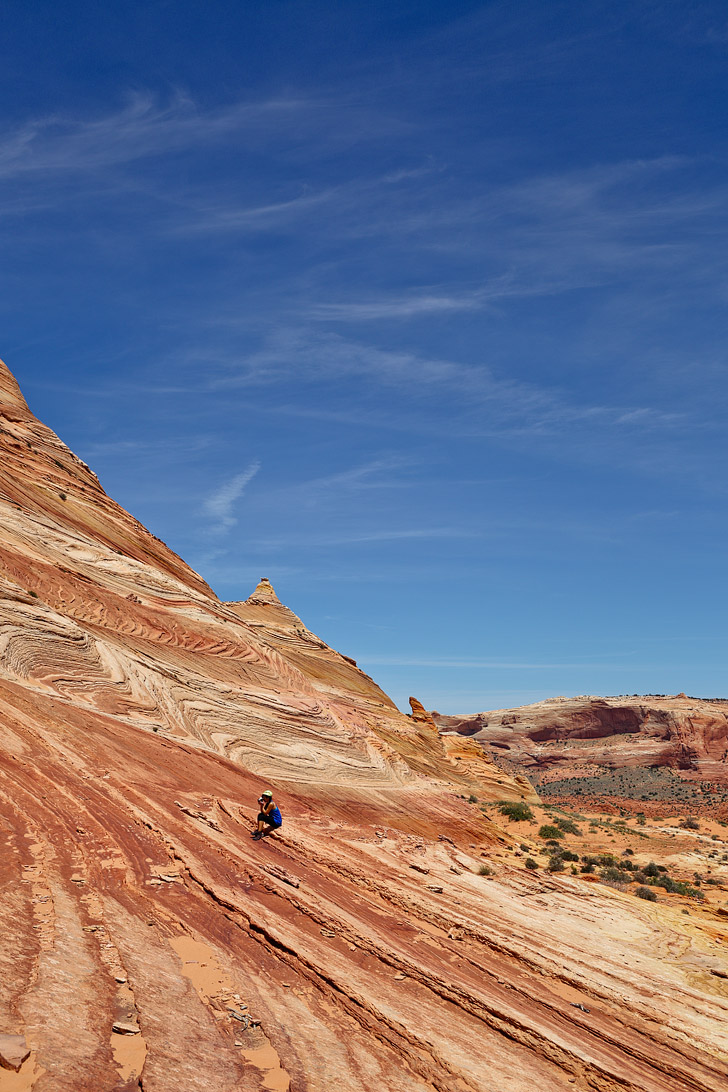 Dinosaur Tracks and Footprints are a quick detour from the Wave Rock Formation in Coyote Buttes North // localadventurer.com