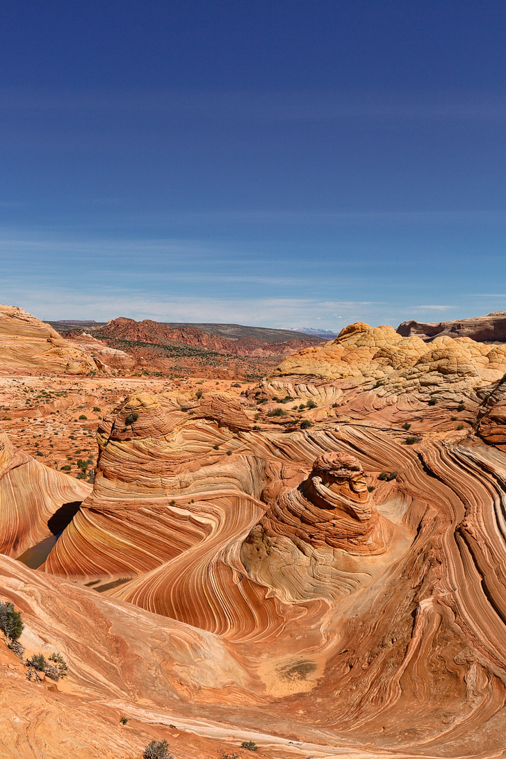 The Wave Rock Formation in Vermilion Cliffs National Monument Arizona // localadventurer.com