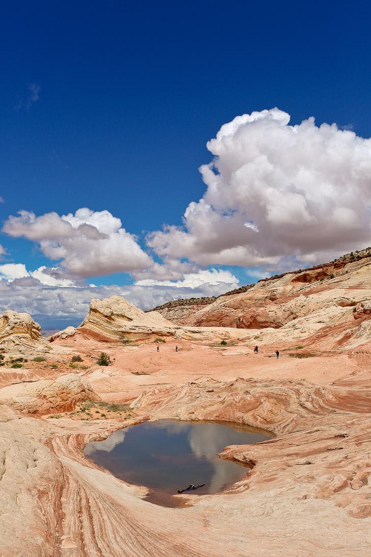 White Pocket Arizona // localadventurer.com