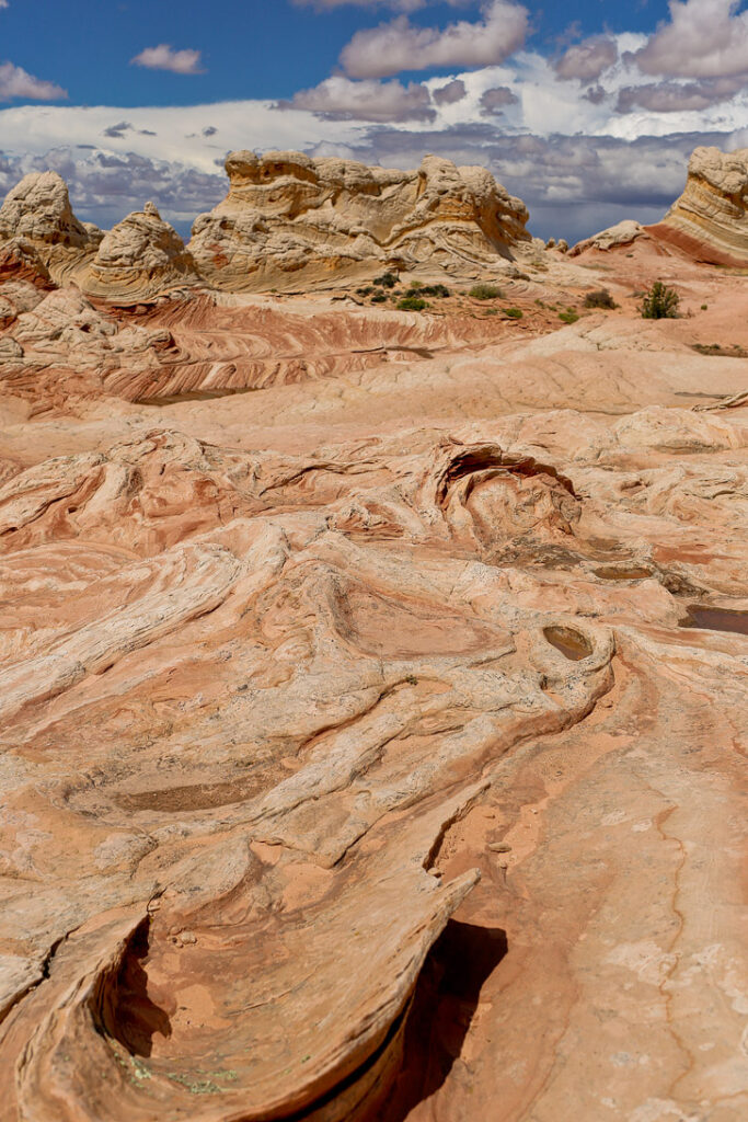 White Pocket AZ - Sandstone Formations in Vermilion Cliffs National Monument near the border of Utah and Arizona // localadventurer.com