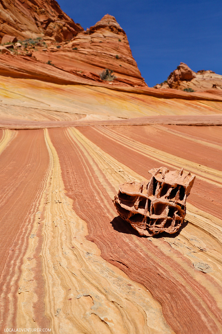 Photo Diary The Wave Vermilion Cliffs National Monument
