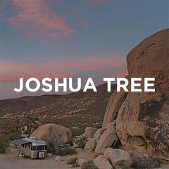 Joshua Tree National Park Guide