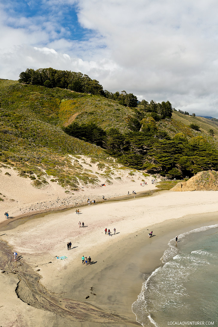 Pfeiffer State Beach Famously Known For Its Purple Sand Is In Sur Monterey