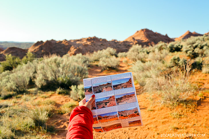 Tips for the Wave Hike and Drive - Vermilion Cliffs National Monument Arizona // localadventurer.com