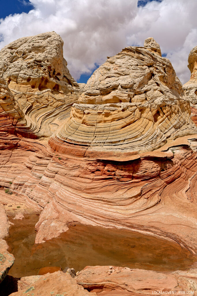 White Pocket Arizona - Sandstone Formations in Paria Canyon Vermilion Cliffs National Monument near the border of Utah and Arizona // localadventurer.com
