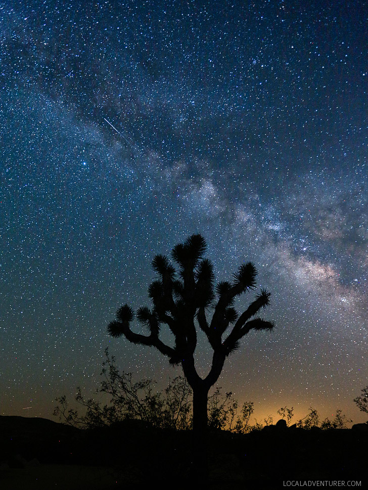 Stargazing at Joshua Tree National Park // localadventurer.com