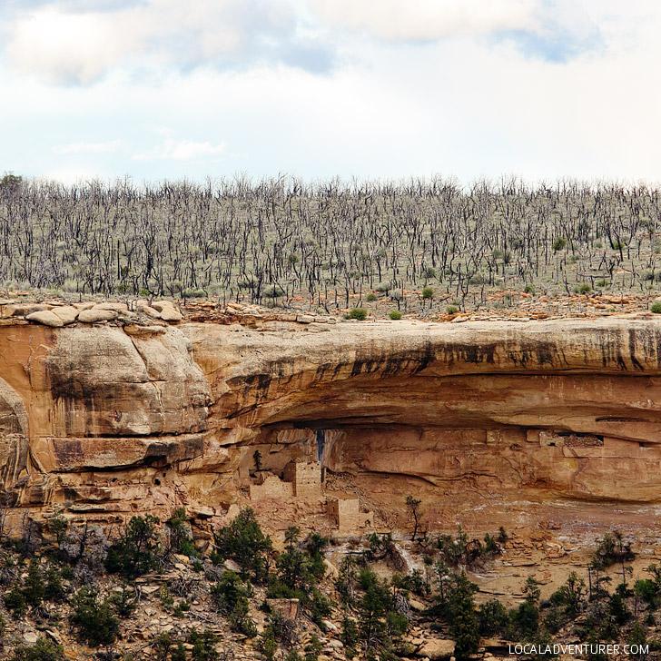 Mesa Verde Hemenway House // localadventurer.com