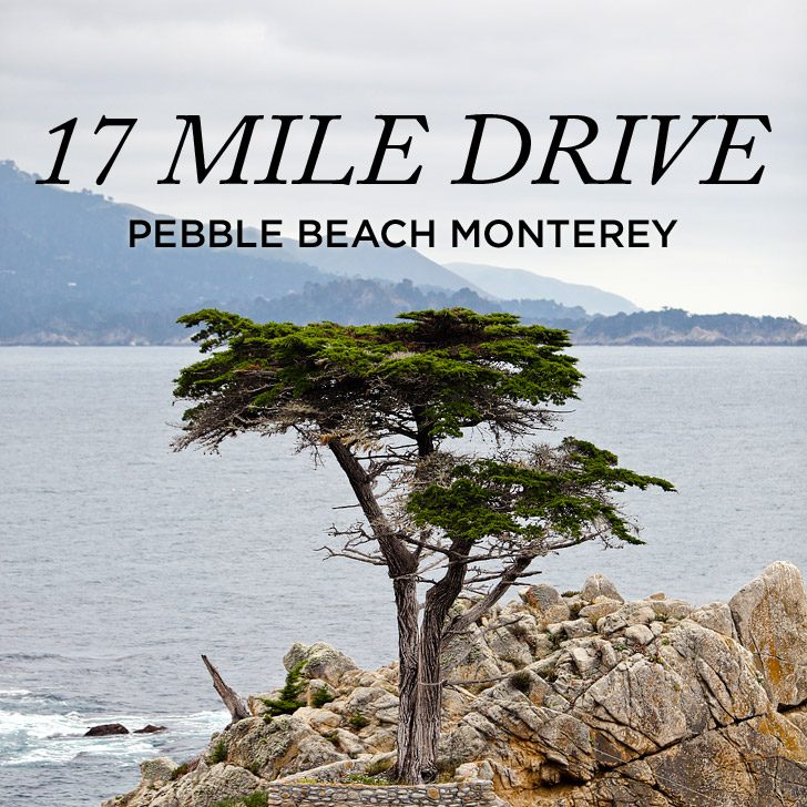 A Quick Guide to the 17 Mile Drive Monterey + Trip Giveaway on