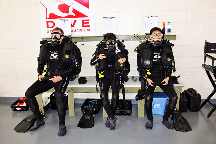 Georgia Aquarium Rebreather Diving Program // localadventurer.com