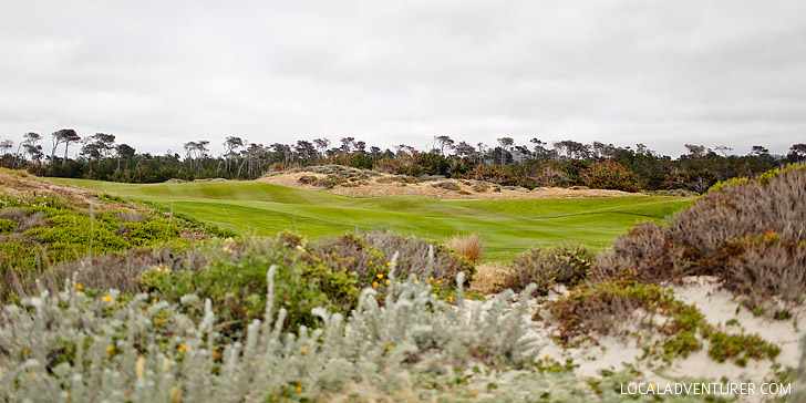 Links at Spanish Bay (A Guide to the Beautiful 17 Mile Drive Monterey California) // localadventurer.com